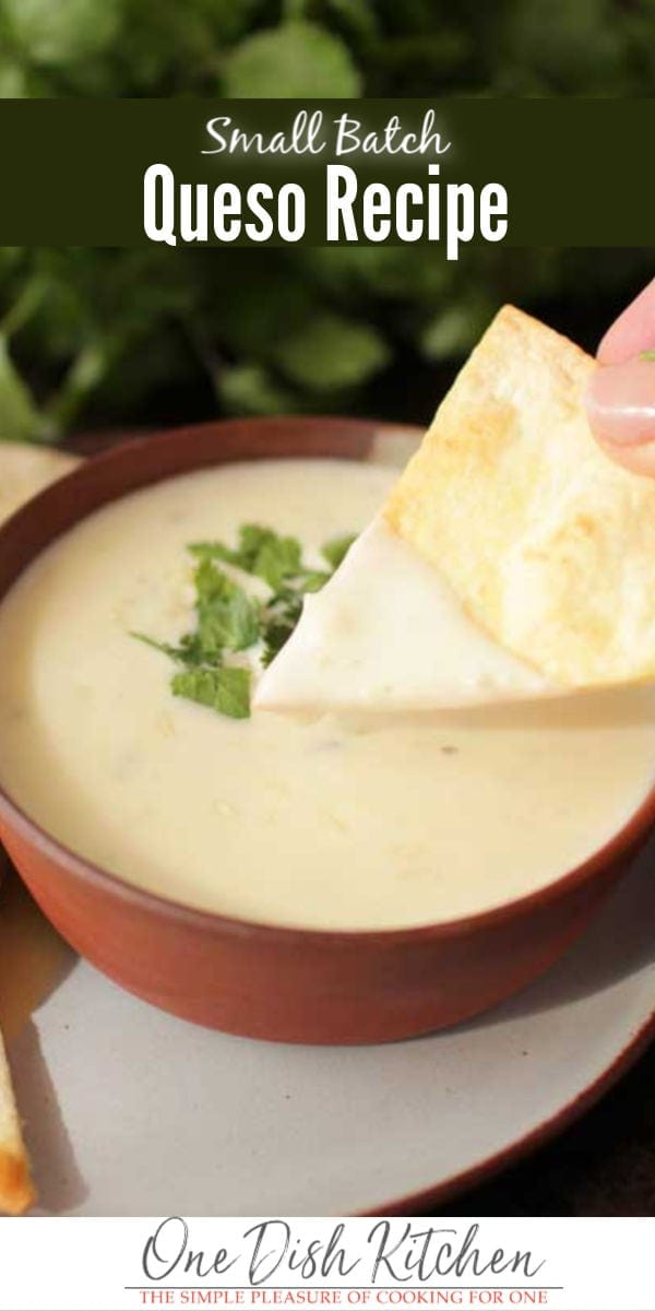 bowl of queso | one dish kitchen