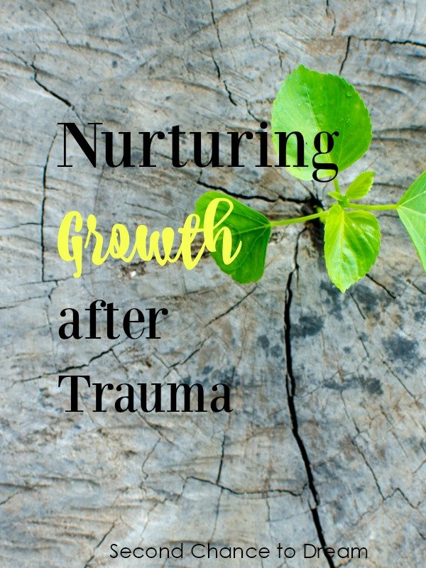 Second Chance to Dream: Nurturing Growth After Trauma #lifelessons