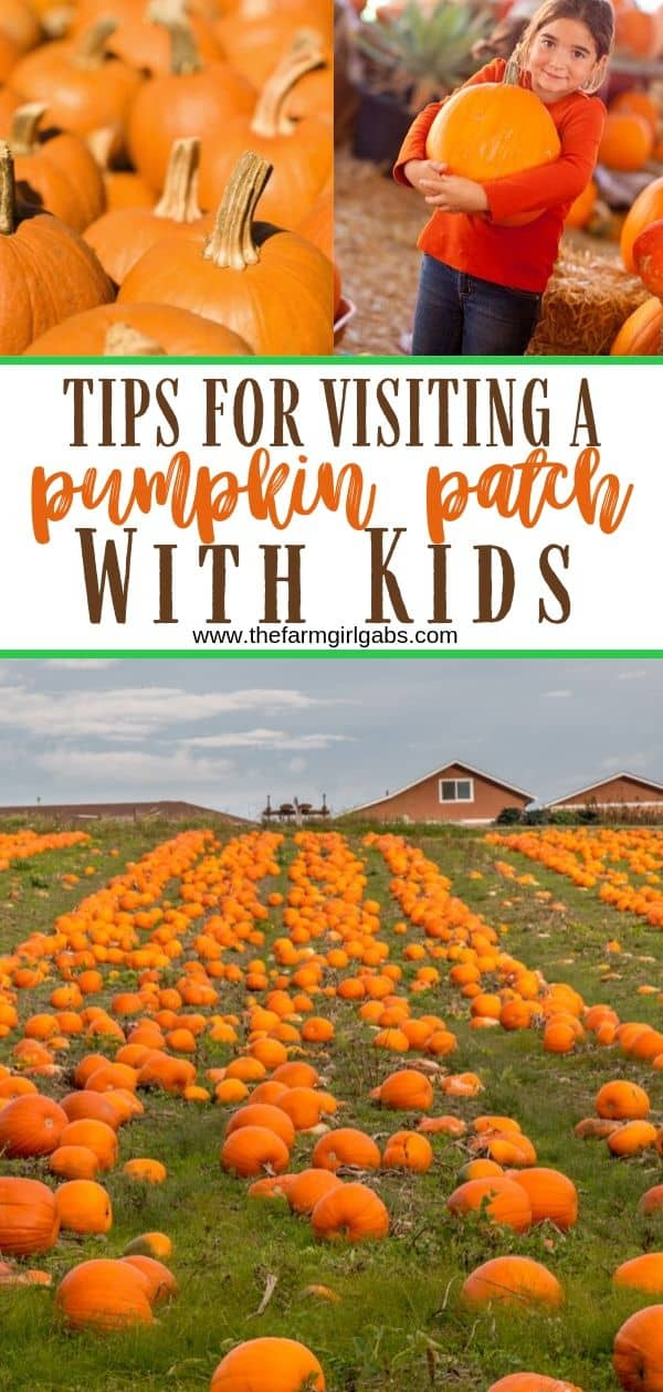 Tips For Visiting a Pumpkin Patch With Kids. Helpful tips for picking pumpkins with your family. #pumpkincraft #pumpkindecorating #fallfun