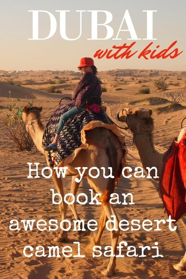 Dubai with kids book a desert camel safari without dune bashing blog