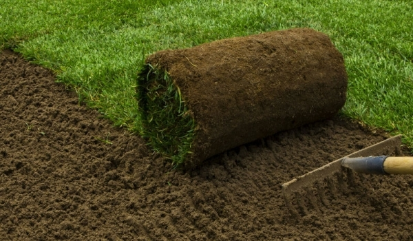 sod roll with dirt and a rake