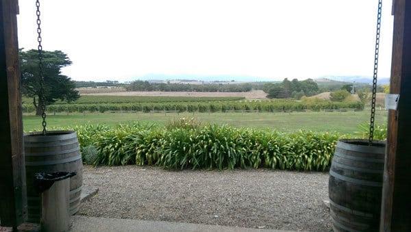 yering farm view