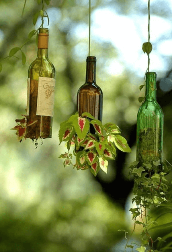 Hanging bottle vertical garden diy
