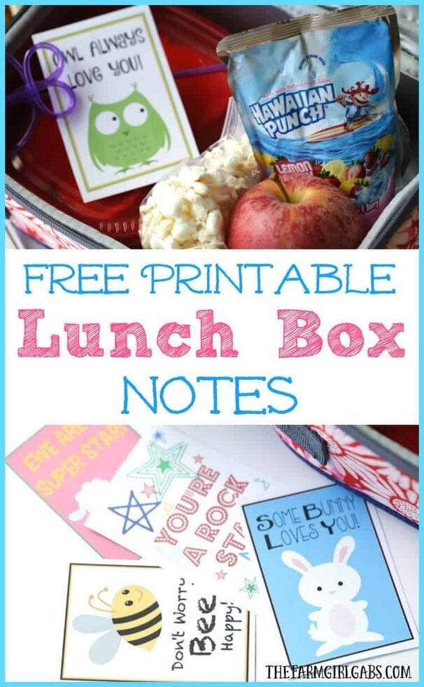 Brighten your child's school day by including one of these adorable free Printable Lunch Box Notes in their lunch.