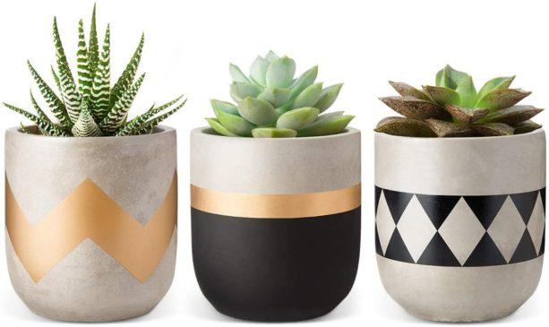 Mkono cement succulent planter set of 3