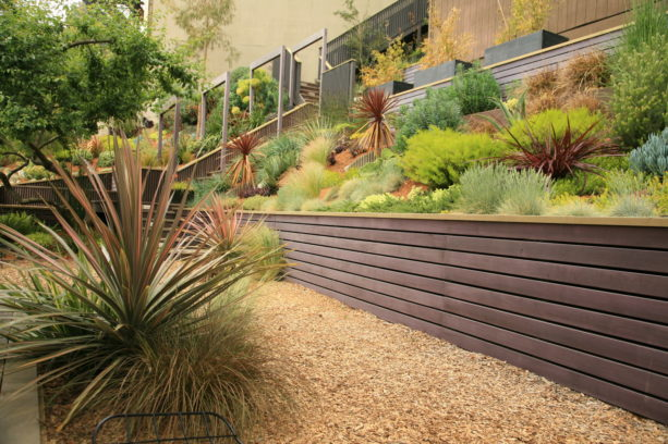 an eichler remodel with steep hillside garden slopes and structural retaining wall