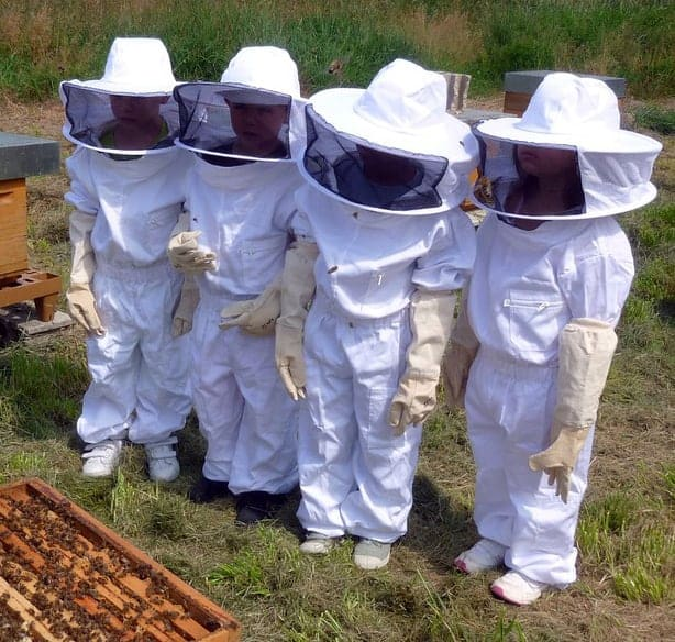 Beekeeping protective clothing, including kids beekeeping suits, may learning about bee more fun.