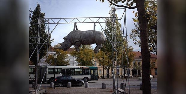 Hanging rhino, Potsdam, Germany