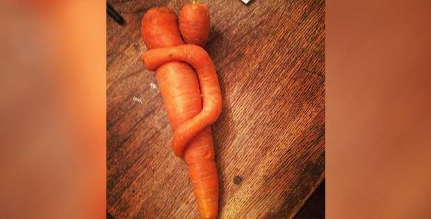 hugging carrots