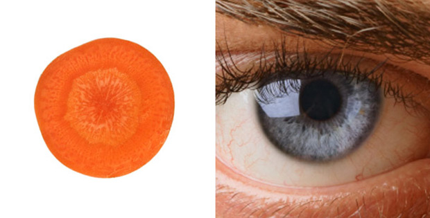 Carrot is good for eyes