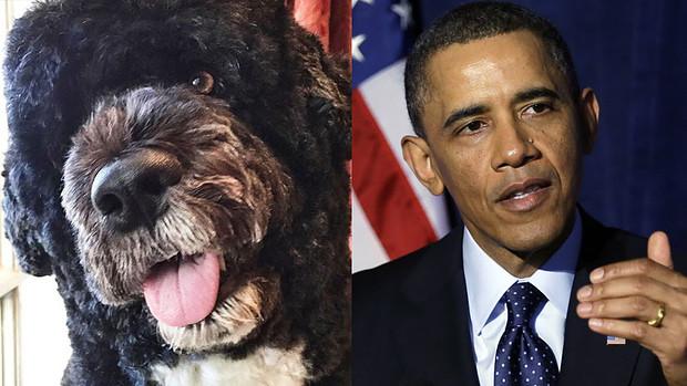 Barack Obama and his Portuguese Water Dog Bo