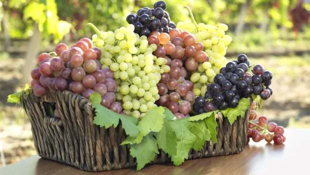 Indian Foods good for the Liver - Grapes