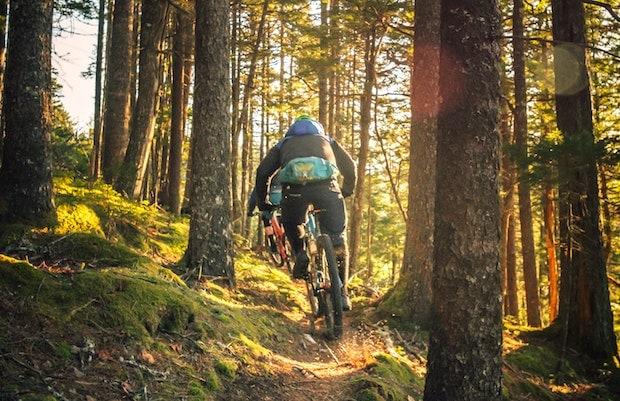 Mountain bikers on a narrow trail
