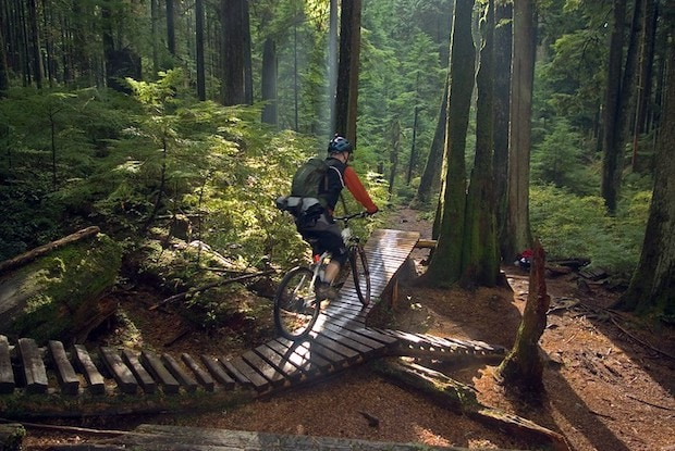 Mountain biker on a forest trail