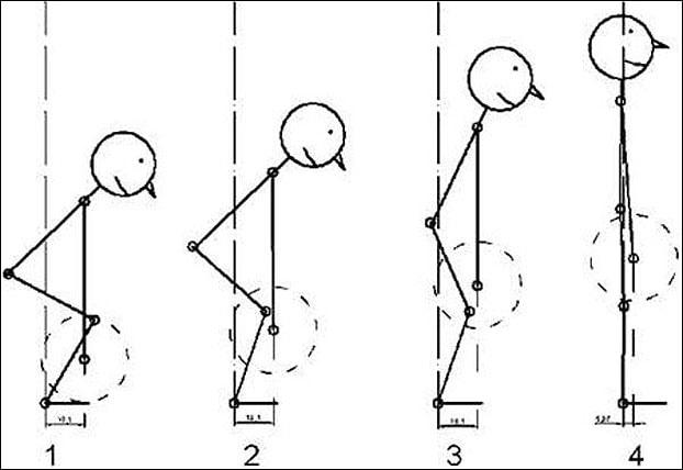 Как делать становую тягу схема