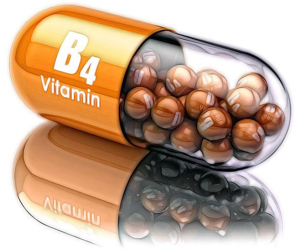 Витамин В холин