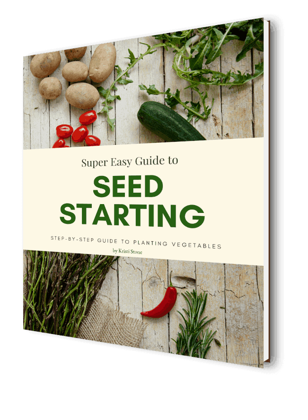 Book cover for Super Easy Guide to Seed Starting by Kristi Stone