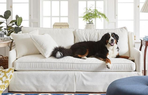 Best upholstery fabric for cleaning