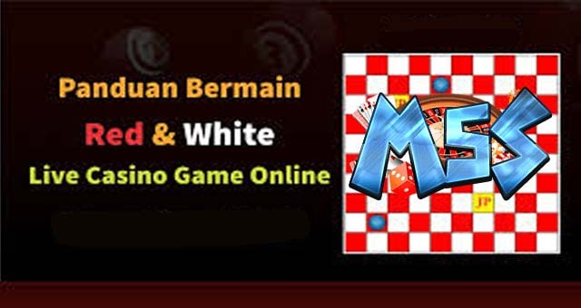 Cara Bermain Game Red White di IDN Live Casino