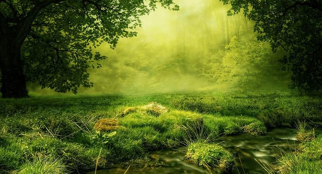 več o naturopatiji pranaturas blog