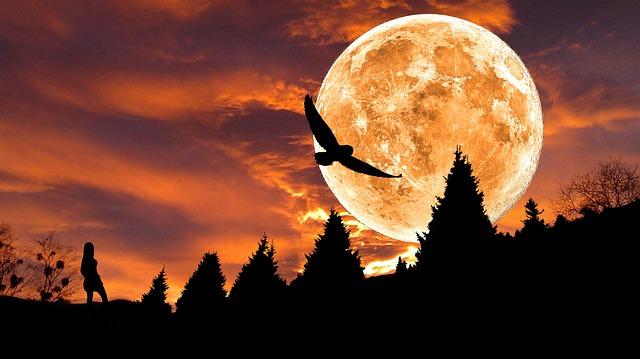 Az álmok üzenete 27. Cseresznye, Csiga, Csillag.