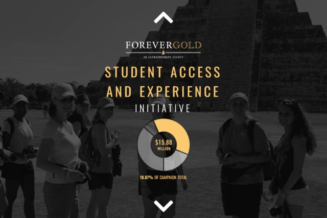 Student Access and Experience Initiative