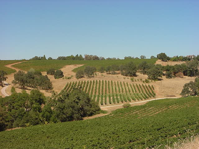 Sutter Creek Winery