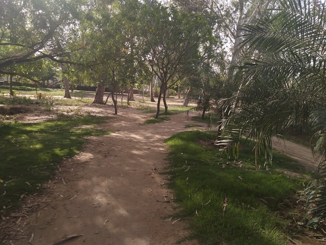 Jogging track in the garden