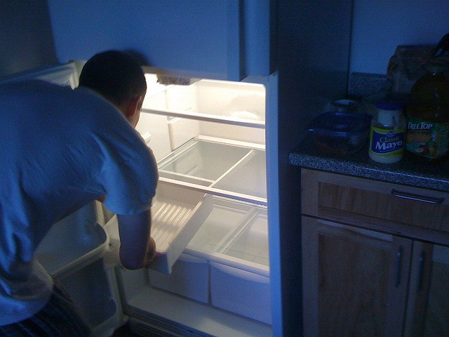 Germ Busting Hints for Your Refrigerator