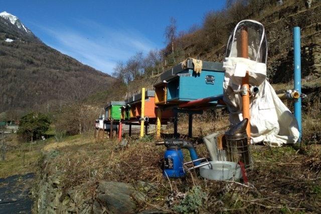 kit-apicoltore-attrezzatura-per-iniziare