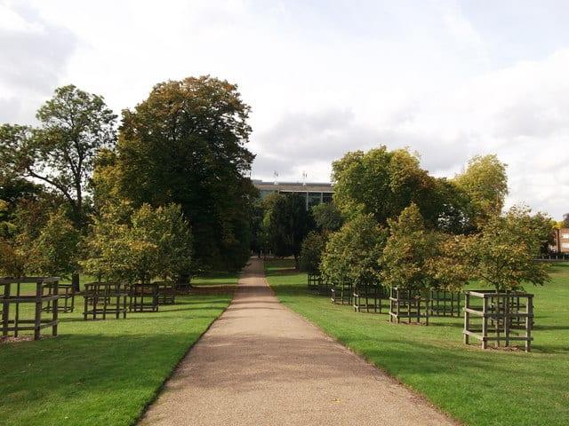 Peckham Rye Park London