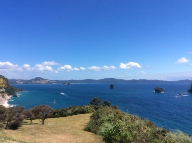 View from Cathedral Cove Carpark