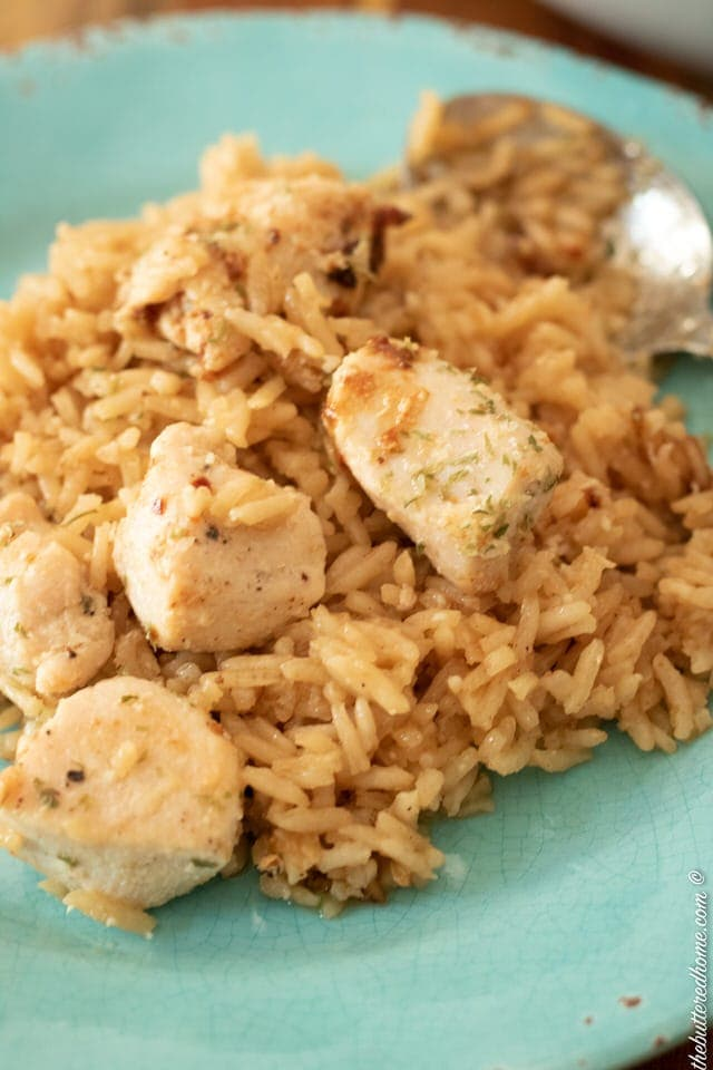 close up of skillet chicken and rice