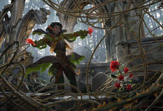 Throne of Eldraine Draft Guide Rosethorn Acolyte Banner