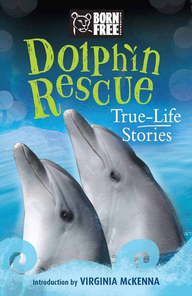 Books for Kids About Dolphins