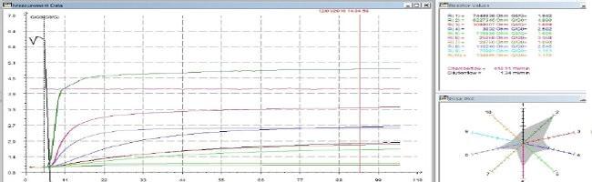 Olfattometria dinamica, grafico