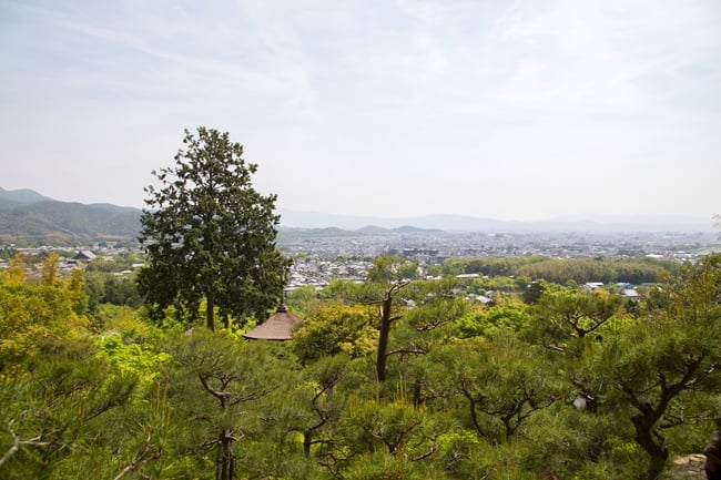Jojakkoji-temple-garden-Kyoto-view