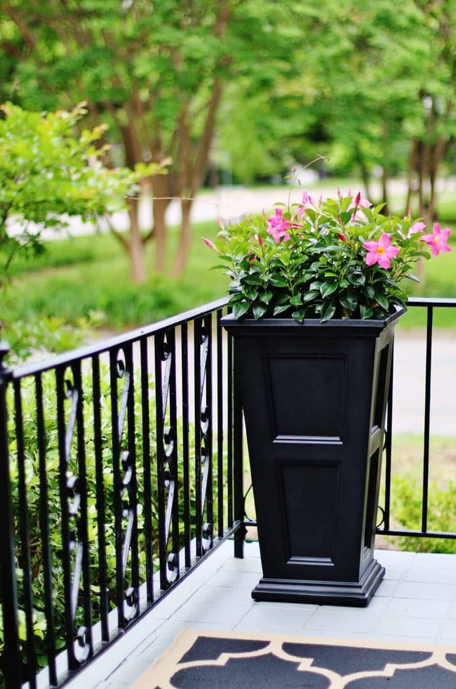 before and after exterior decorating ideas planter