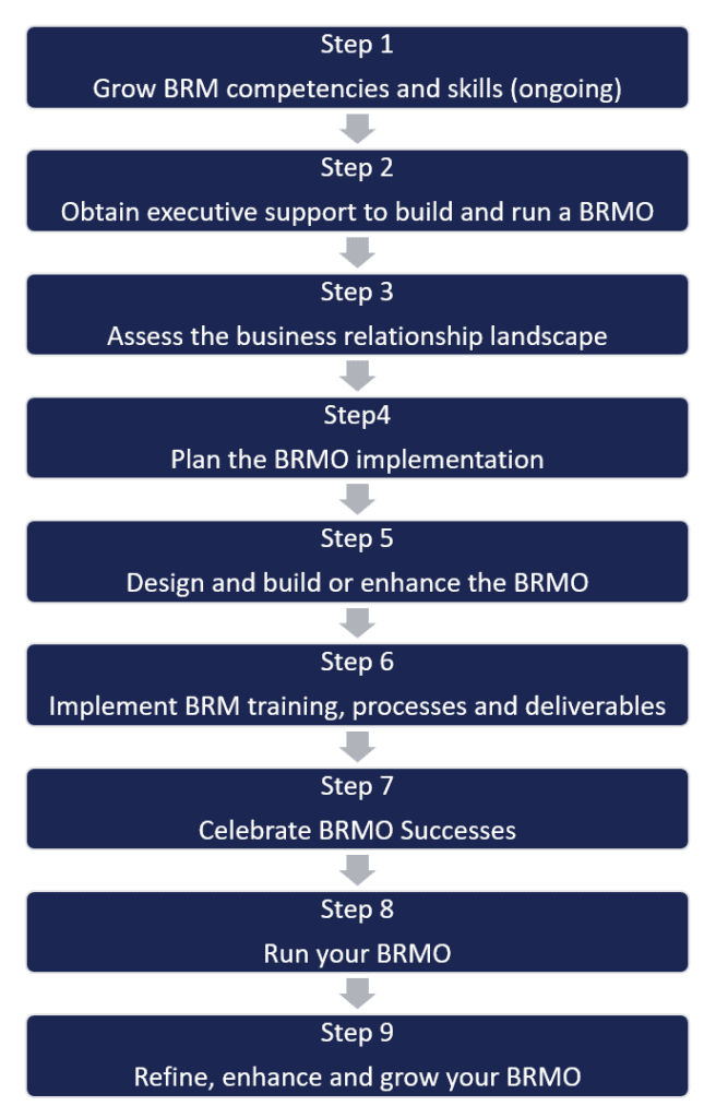 Nine Steps to Plan - Build - Run a BRMO