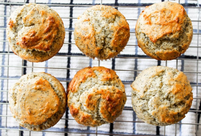 Orange Lemon Poppyseed Muffins - A zesty twist on a classic citrusy breakfast treat!