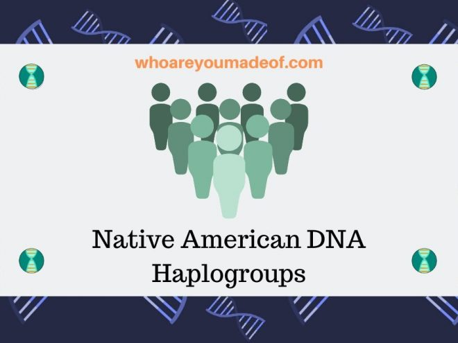 Native American DNA Haplogroups