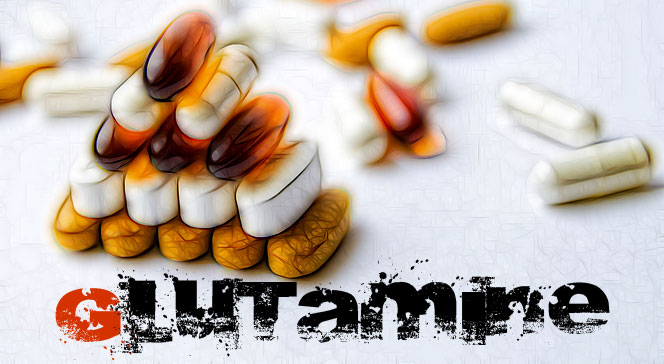 Глютаминовая кислота в бодибилдинге