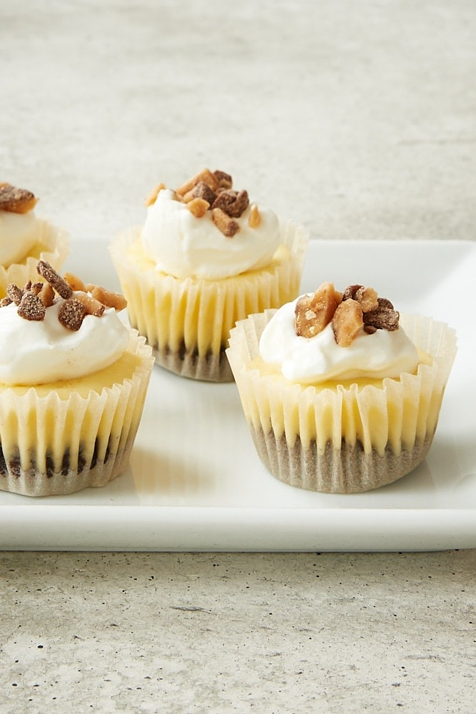 Brownie Bottom Mini Cheesecakes topped with sweetened whipped cream and chocolate toffee bits
