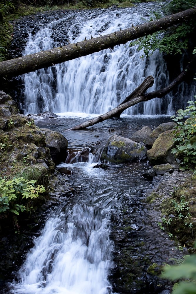 Dutchman Falls, one of the many waterfalls in Oregon you will see on Larch Mountain Trail
