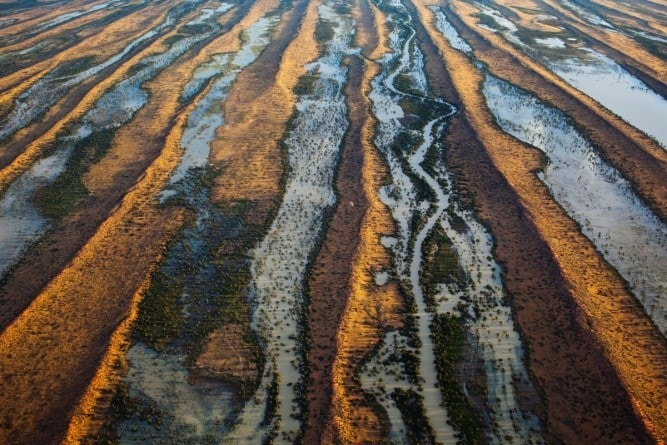Image: View of the outback after the rains