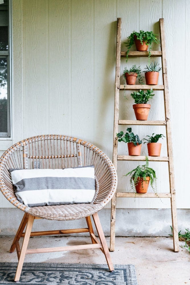 tall ladder leaning against house with plants on rungs