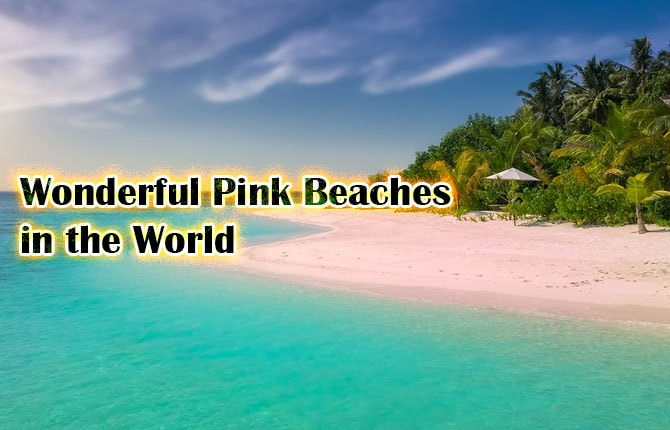 Photo of Wonderful Pink Beaches in the World