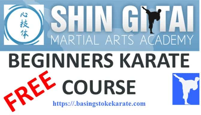 FREE Beginners online Karate course