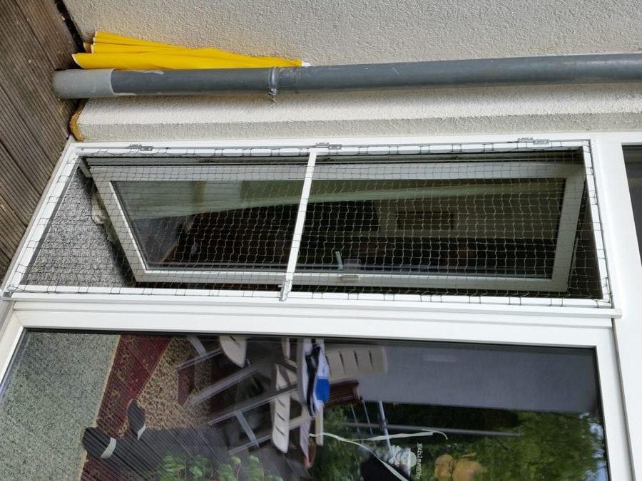 katzensicherung an Fenster und Türen