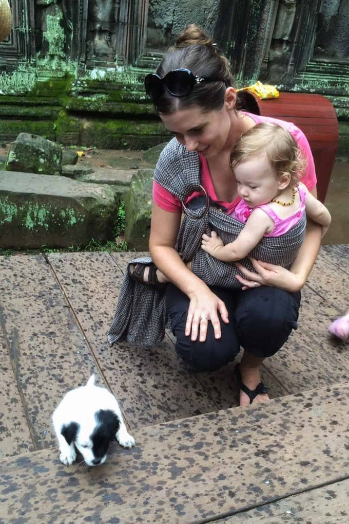 Puppy in Cambodia